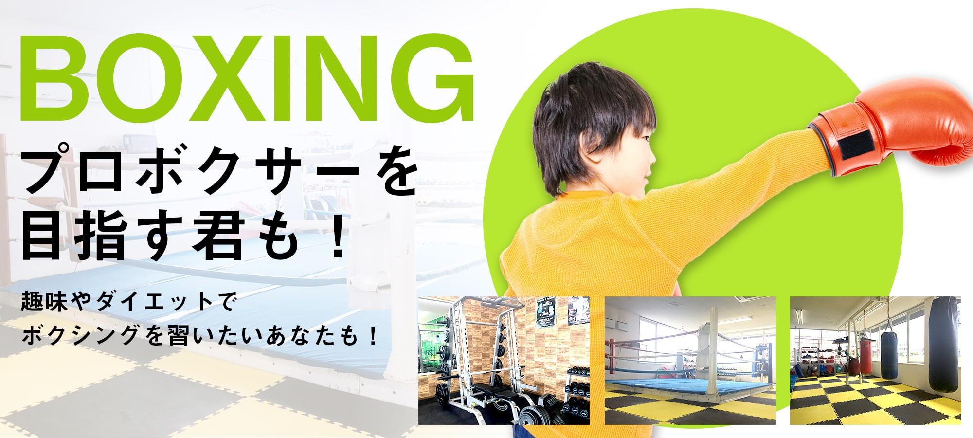プロボクサーを目指す君も!趣味やダイエットでボクシングを習いたいあなたも!